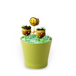 Cake Pops Μέλισσα