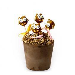 Cake Pops Κουκουβάγια